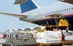 Bắt giữ đối tượng ăn trộm hàng ký gửi tại sân bay Nội Bài