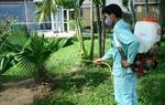 Chỉ thị về việc tăng cường công tác phòng, chống dịch sốt xuất huyết