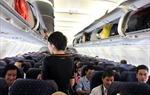 Phạt 15 triệu đồng nam hành khách đánh nữ tiếp viên trên máy bay