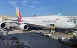IATA kêu gọi điều chỉnh quy định hàng không để đối phó dịch COVID-19