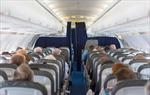 Nghiên cứu giải pháp chống lây lan vi rút trong khoang máy bay