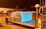 Các hãng hàng không Việt Nam vận chuyển miễn phí hàng hoá cứu trợ tới miền Trung