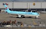 Korean Air dự kiến kinh doanh có lãi nhờ hoạt động logistics