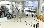 Dừng mở bán vé trên các đường bay nội địa cho đến khi có thông báo mới