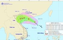 Cục Hàng không Việt Nam triển khai các phương án ứng phó cơn bão số 3 (Wipha)